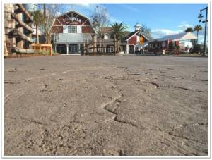 Brownwood Paddock Square, The Villages Florida - Bomacron Dried Earth Texture