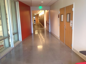 Educational Center Polished Concrete Floor