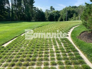 The Partially Concealed Grasscrete system provides a cobblestone decorative designed driveway for this Essex County Estate