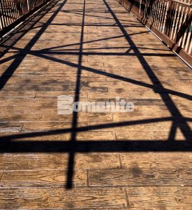 """El Paso Zoo Chihauhuan Desert Exhibits with Bomanite Imprinted Concrete Systems using the Bomacron 6"""" Random Boardwalk pattern that resembles wood plank for the viewing bridge decks."""