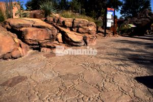 El Paso Zoo Chihauhuan Desert Exhibits with Bomanite Imprinted Concrete Systems showcasing the Bomacron Garden Stone pattern installed by Bomanite Artistic Concrete from El Paso, TX replicating a Desert Riverbed.
